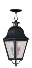 Livex Lighting 2546-04 - 2 Light Black Outdoor Chain Lantern