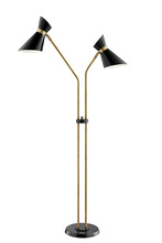 Lite Source Inc. LS-83136 - Jared Floor Lamps